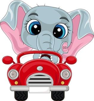 赤い車を運転する漫画の赤ちゃん象