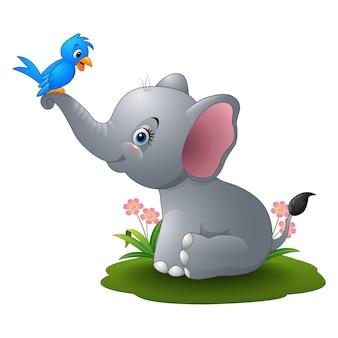 Cartoon baby elephant playing with blue bird