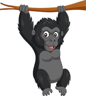 Cartoon baby gorilla hanging in tree branch