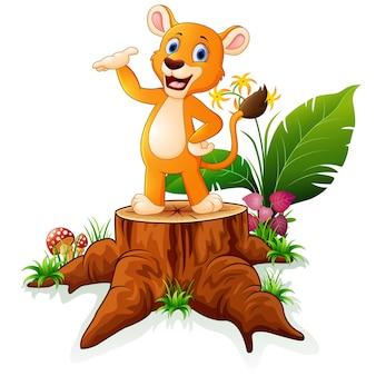 Cartoon baby lion presenting on tree stump