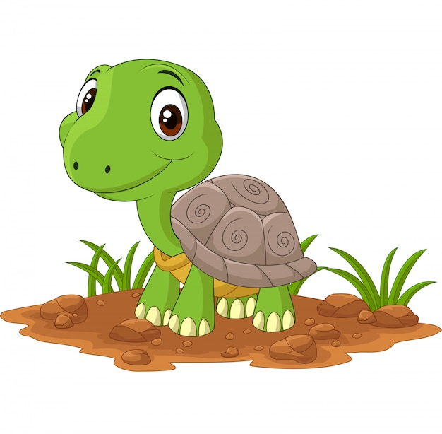 Cartoon baby turtle in the field