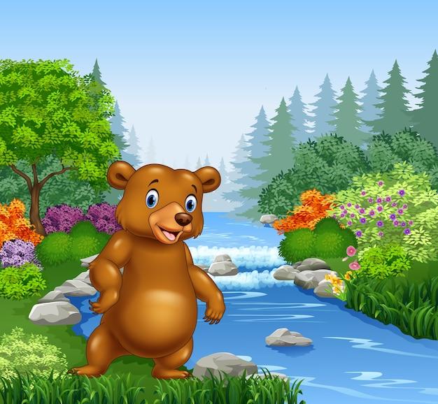 Cartoon bear in beautiful river in forest