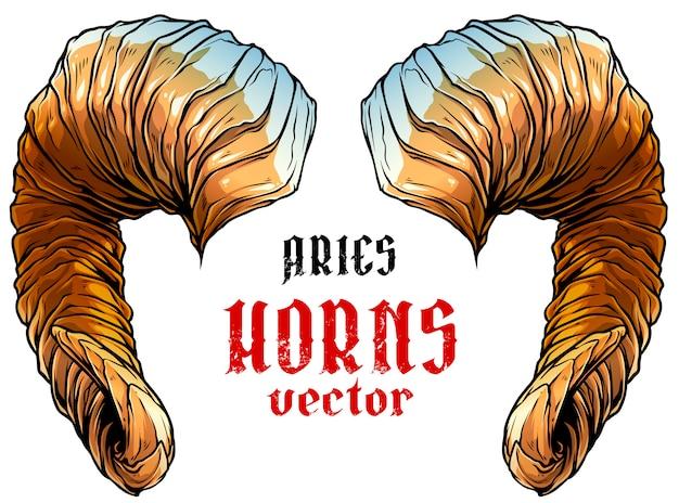 Cartoon big sharp ram horns vector