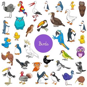 Мультфильм птиц животных символов большой набор