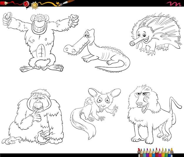 漫画の鳥の動物のキャラクターは、塗り絵のページを設定します