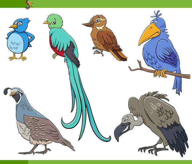 Мультфильм птиц видов животных персонажей набор
