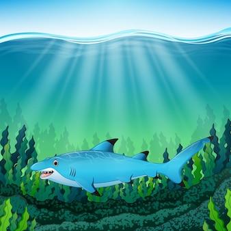 Мультяшная синяя акула под водой