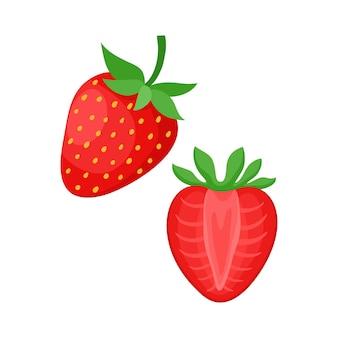신선한 유기농 베리의 흰색 벡터 일러스트 레이 션에 고립 된 만화 밝은 자연 딸기