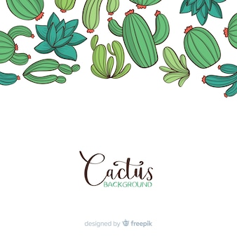 Cartoon cactus background