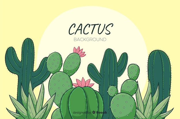 Cartoon cactus background Vector | Free Download