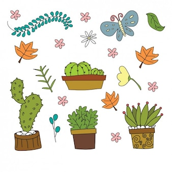 Cartoon cactus collection with flowers and butterflies in flat design