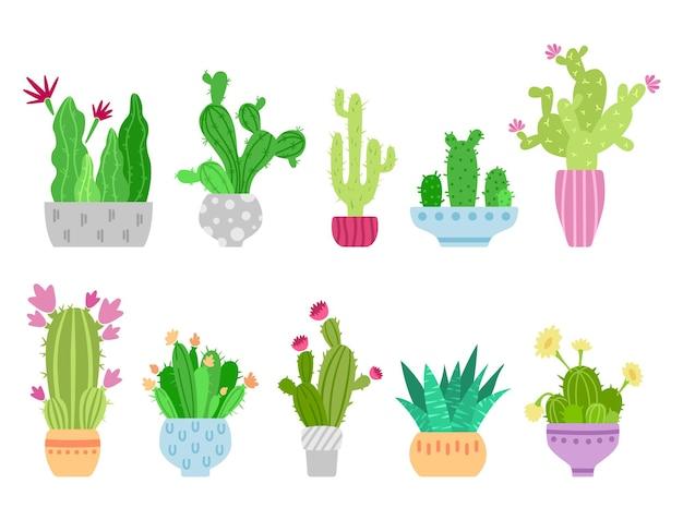 Cartoon cactus and succulent clipart set