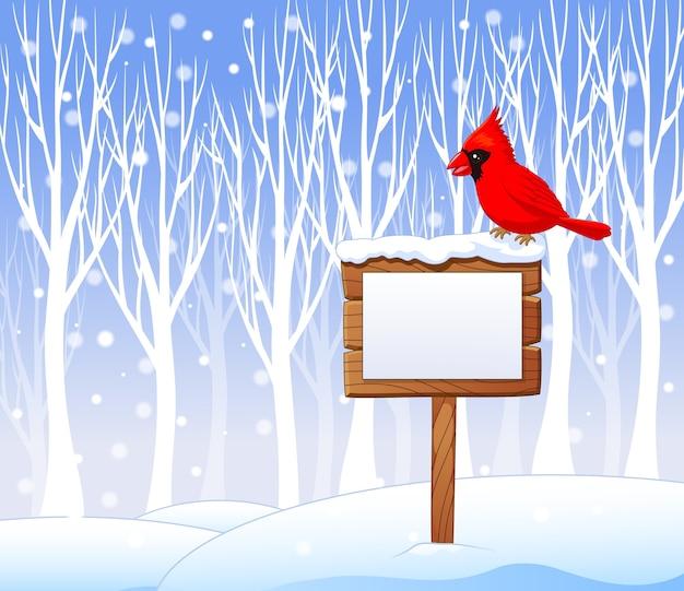 Cartoon cardinal bird on the blank sign
