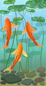 Cartoon carps koi fish. underwater view.