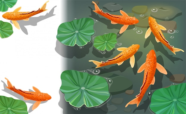 Cartoon carps koi. underwater view.