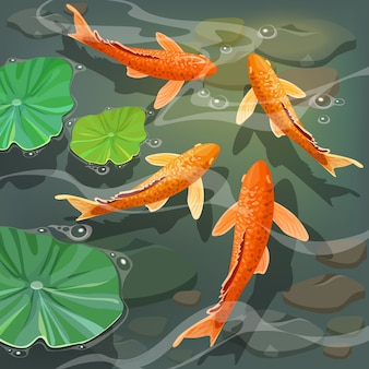 Cartoon carps koi.