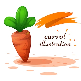 Cartoon carrot illustration on the white background.
