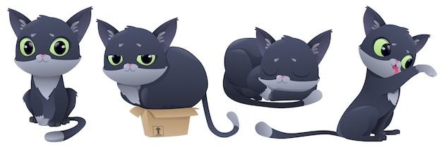 Cartoon cat character  set