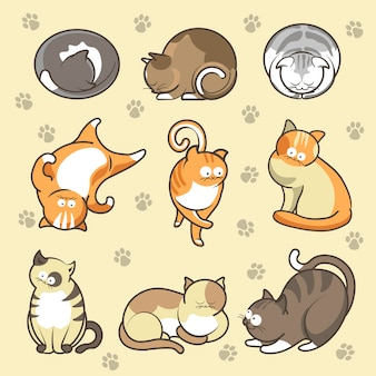 Cartoon cats kittens in different poses vector icons set