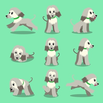 Cartoon character afghan hound dog poses set