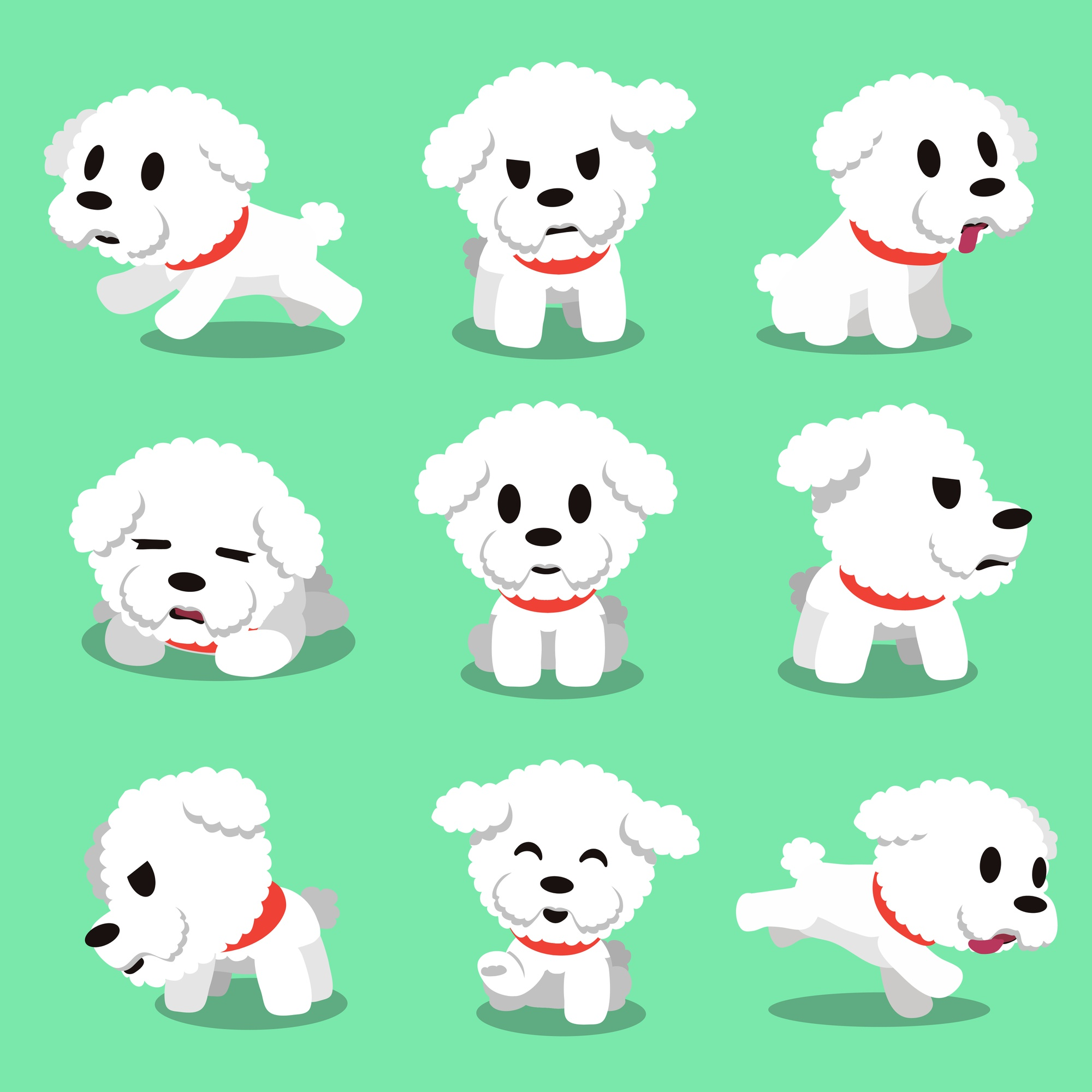Cartoon character bichon frise dog poses
