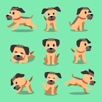 Cartoon character border terrier dog poses