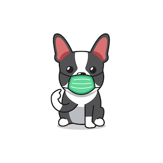 Cartoon character boston terrier dog wearing protective face mask
