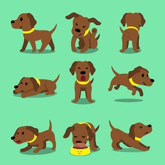 Cartoon character brown labrador dog poses