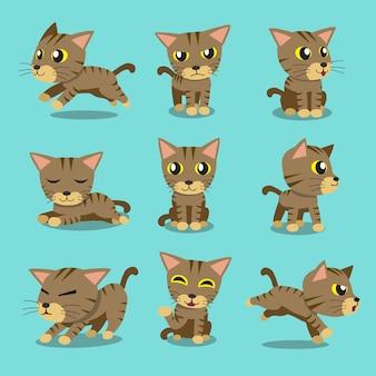 cartoon character cat poses  premium vector