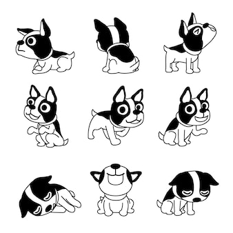 Cartoon character cute boston terrier dog poses