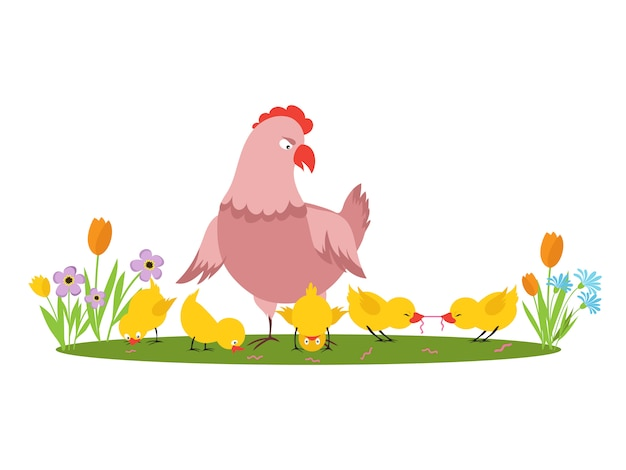 Cartoon character hen and little chickens in the meadow   on white background