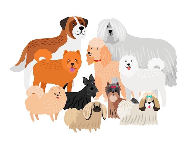 Мультипликационный персонаж выкладывает волосы больших и маленьких собак. домашние животные на белом фоне
