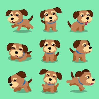 Cartoon character norfolk terrier dog poses
