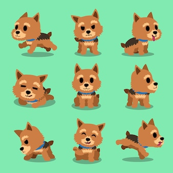 Cartoon character norwich terrier dog poses
