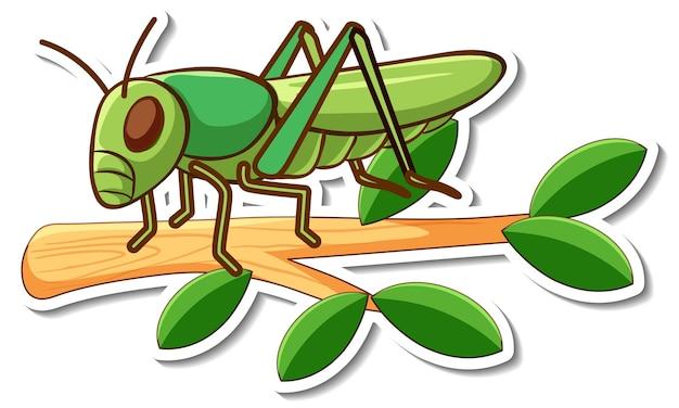 나뭇가지에 메뚜기의 만화 캐릭터 스티커