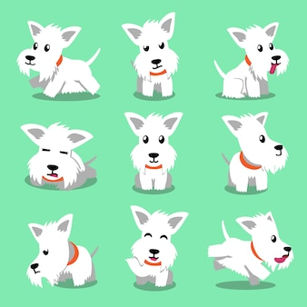 Cartoon character white scottish terrier dog poses