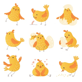Cartoon chicken. egg cute yellow little farm birds funny chick  characters collection