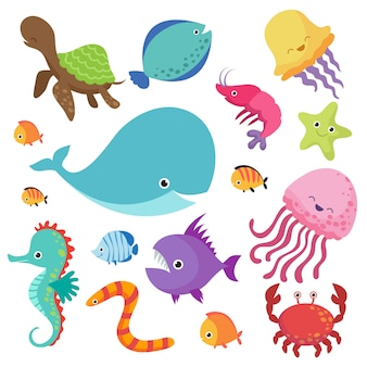 Cartoon childrens aquarium and wild sea fishes set