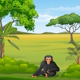 Cartoon chimpanzee in the savannah