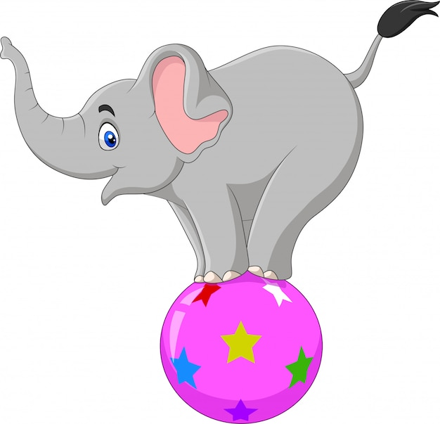 Cartoon circus elephant standing on a ball