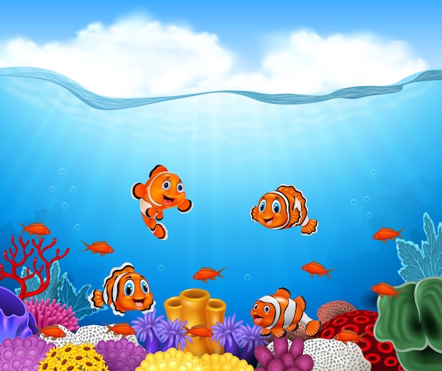 Cartoon clown fish in the
