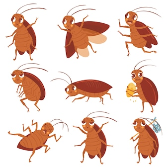Cartoon cockroach mascot