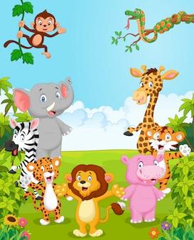 Cartoon collection happy animal