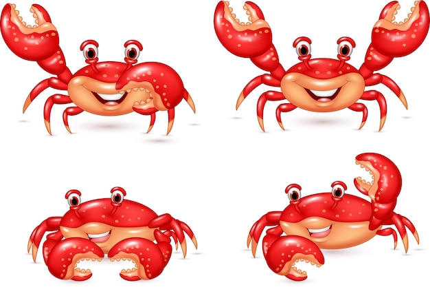 Cartoon crab collection set isolated on white background