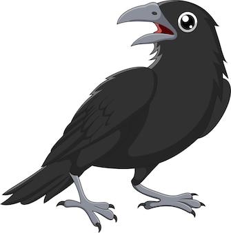 Мультяшный ворона, изолированные на белом фоне