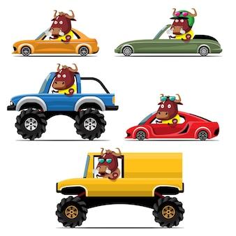 Cartoon cute animal drive car on the road
