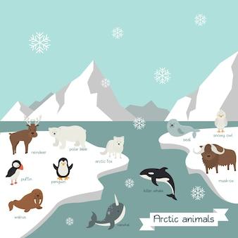 Cartoon cute arctic animals illustration