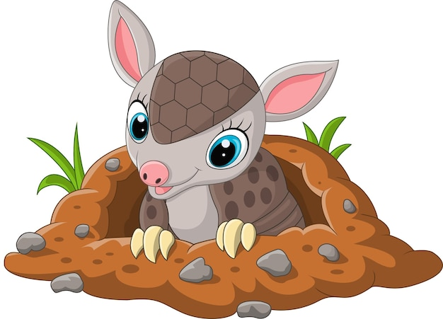 Cartoon cute baby armadillo out of a hole