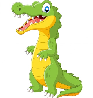 Cartoon cute crocodile standing on white