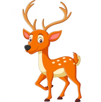 Cartoon cute deer on white
